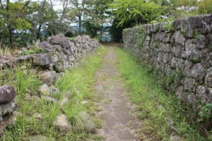 岡城の高石垣