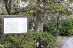 沖田畷古戦場跡