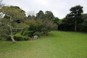 神代城の曲輪