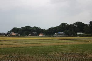 神代城(鶴亀城)