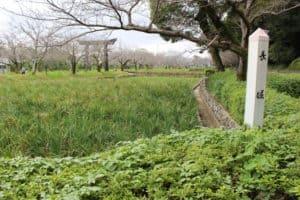 玖島城(大村城)の掘