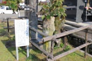 千人塚石塔(耳塚)