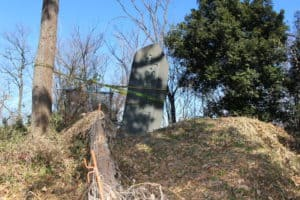 武蔵・松山城