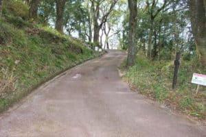 岡豊城の遊歩道