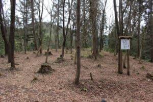 美濃・明知城の二の丸