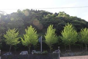 飯山(飯山城・飯山砦)