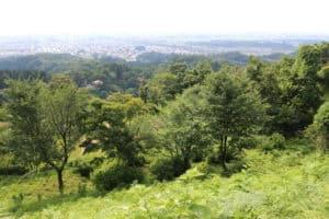 春日山城からの眺め
