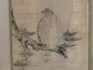 土岐頼芸の鷹
