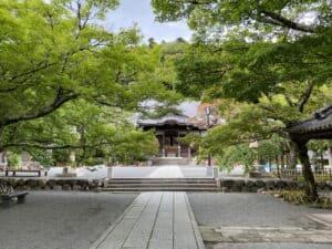 伊豆・修禅寺